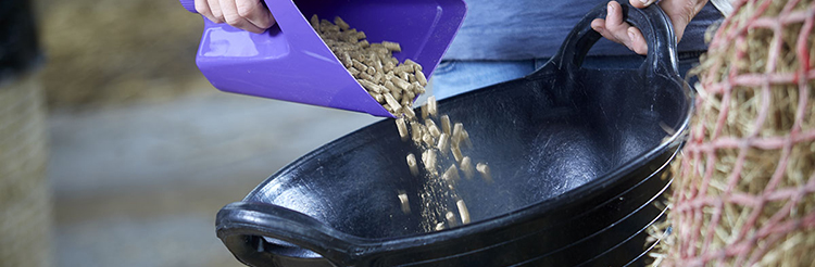 Horse Feed Supplements for the control of flies.