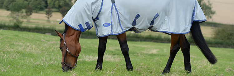 Fly Rugs available from brands including Shires, Horseware, Weatherbeeta and Gallop.