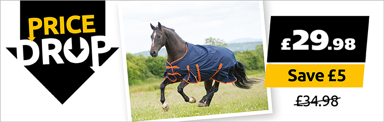 Gallop Trojan 100g Standard Neck Turnout Now Only £29.98
