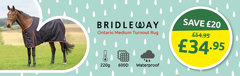 Bridleway Ontario Medium 220g Standard Neck Turnout