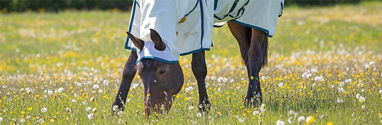 Sweet Itch Products to help protect your horse all summer.