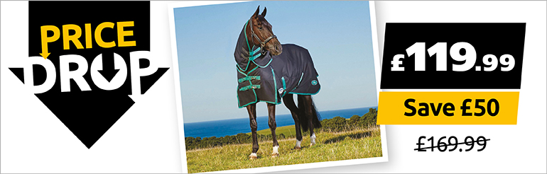 Weatherbeeta Green-Tec Turnout Rug Now Only £119.99